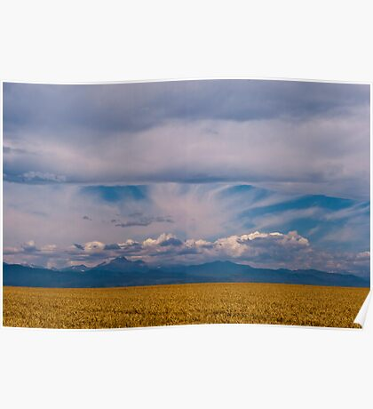 Colorado Mountains And Grain Fields Poster