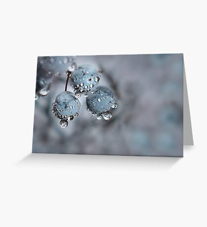 Wild Berries Decorated by Nature Greeting Card
