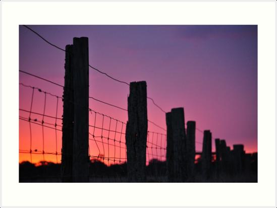 fenceline by Coralie Plozza
