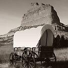 Oregon Trail by Linda Eshom