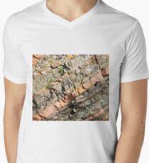 A slice of geology V-Neck T-Shirt