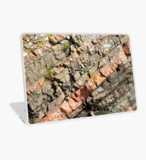A slice of geology Laptop Skin
