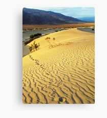 Footsteps-sand dune at dawn-Death Valley Canvas Print