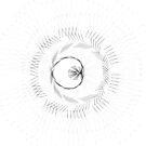 Spirograph 4 by Allison Chen