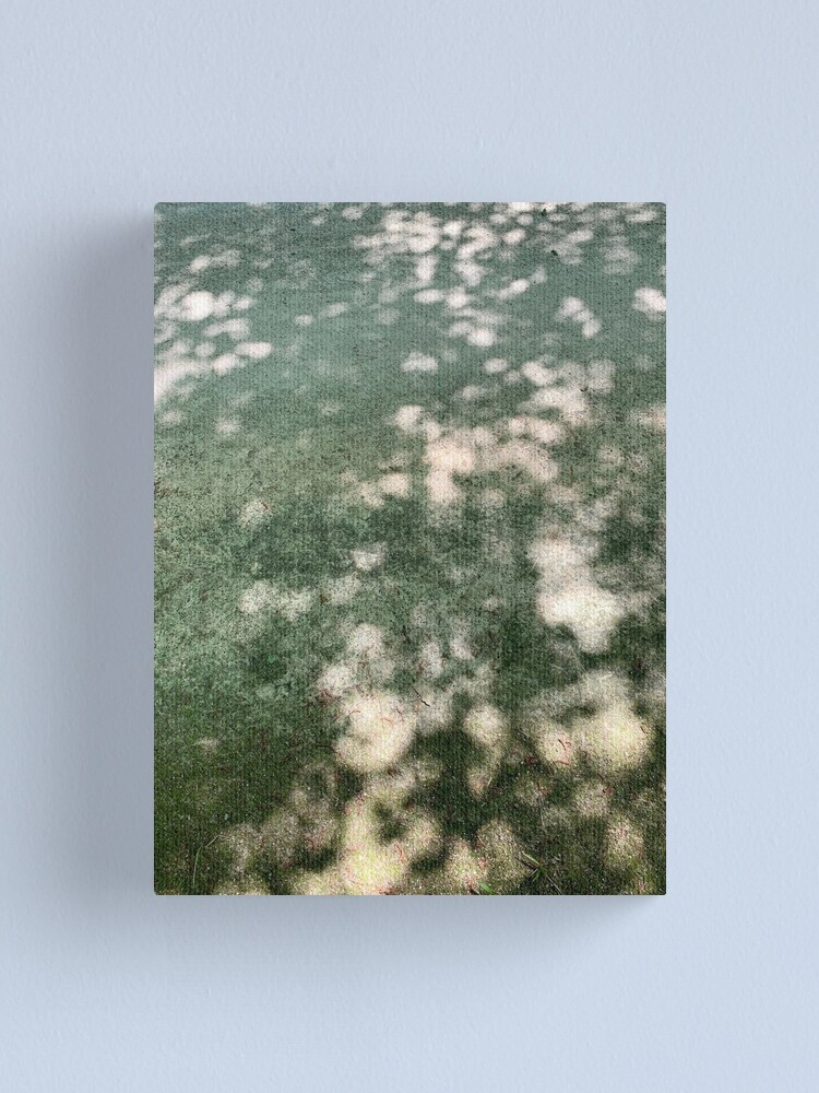 Alternate view of Shadows on My Path Canvas Print