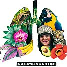 NO OXYGEN = NO LIFE by Elyse Boardman