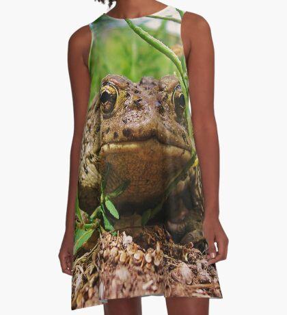 Toad A-Line Dress