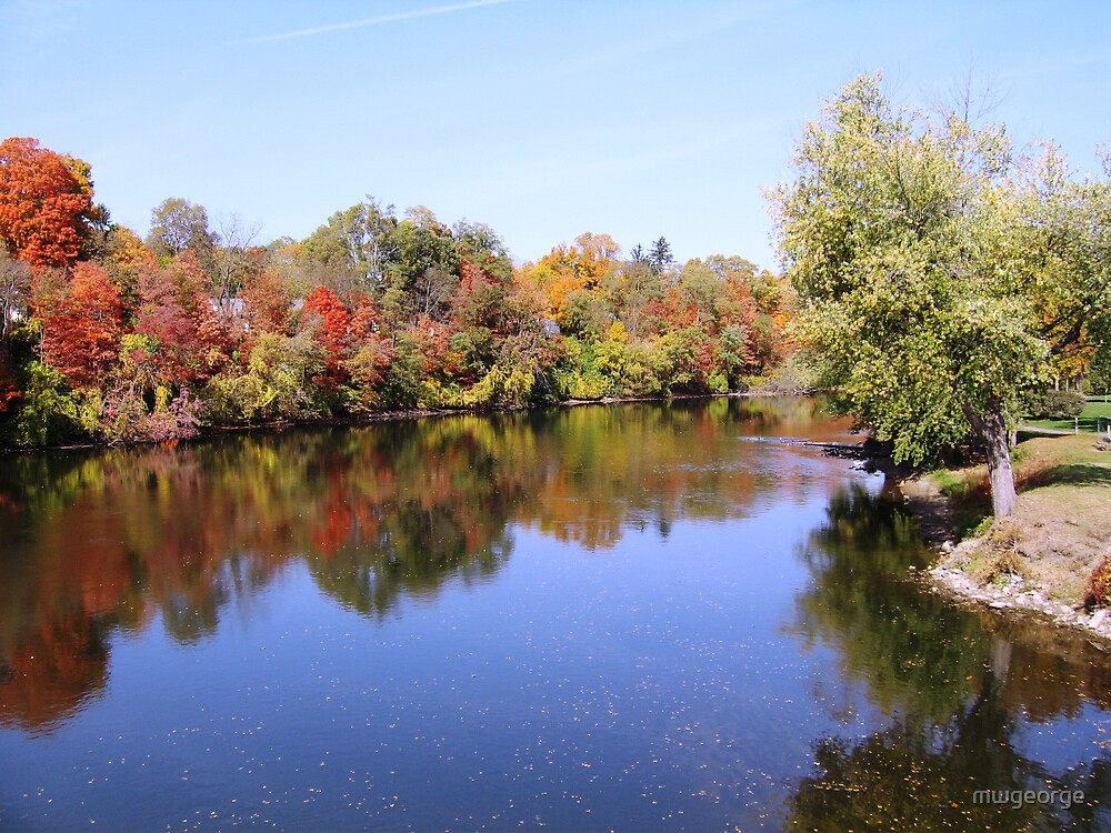 Colorful Fall River by Wayne George
