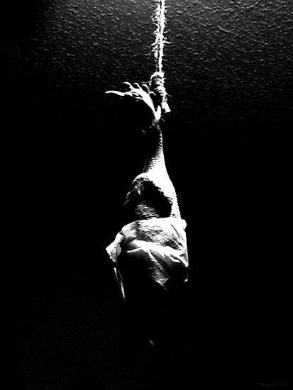 hanging chicken by Margaret Bryant