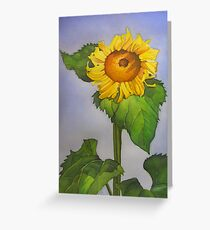Sunflower and Summer sky Greeting Card
