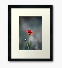 We Will Remember Our Fallen Heroes... Framed Print