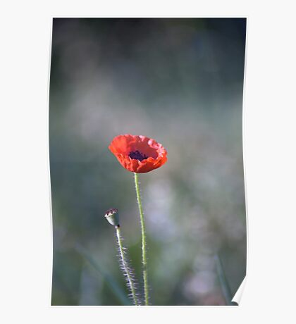 We Will Remember Our Fallen Heroes... Poster