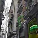 Barcelona-Barri Gottic Street Scene--Green Umbrella by milton ginos