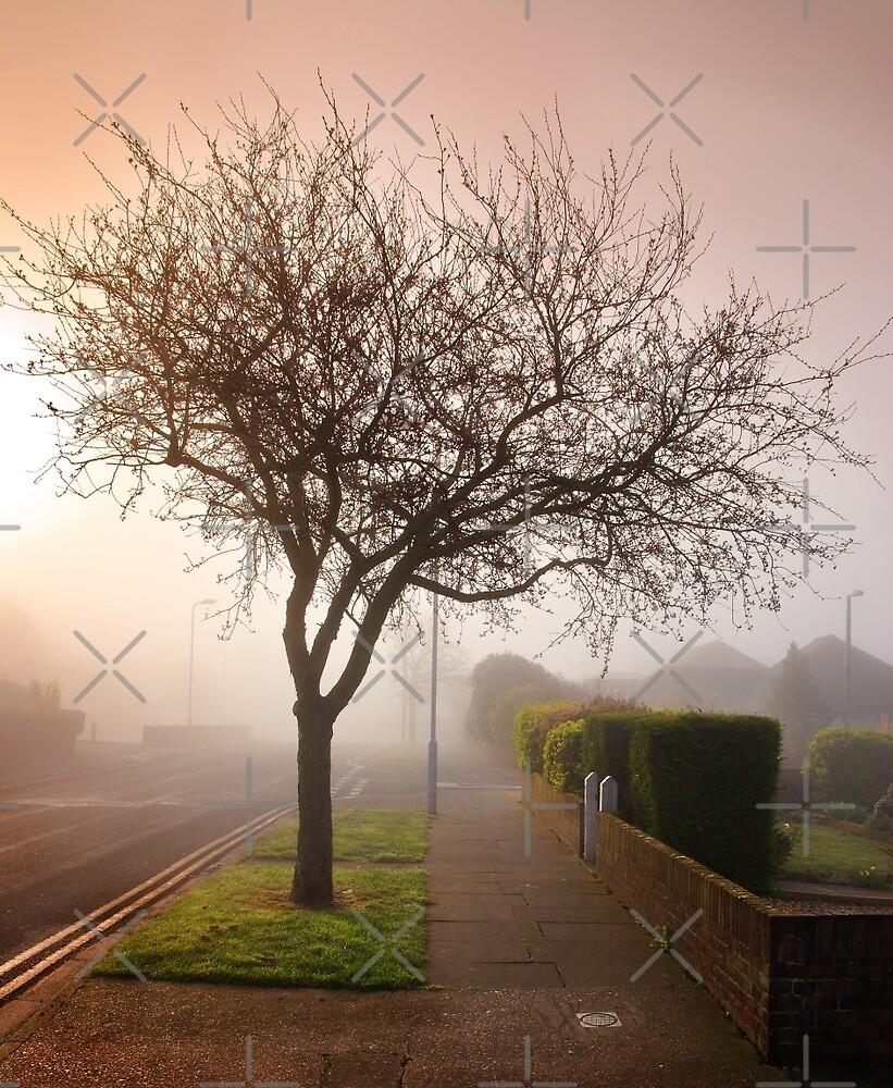 Misty Morning in Birchington by Geoff Carpenter