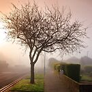 Misty Morning in Birchington by Geoff Carpenter