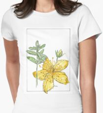 Hypericum perforatum - Botanical illustration Womens Fitted T-Shirt