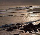Wave Patterns by Odille Esmonde-Morgan