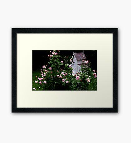 Mayor of Casterbridge Rose and Birdhouse Framed Print