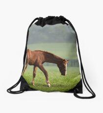 Filly Drawstring Bag