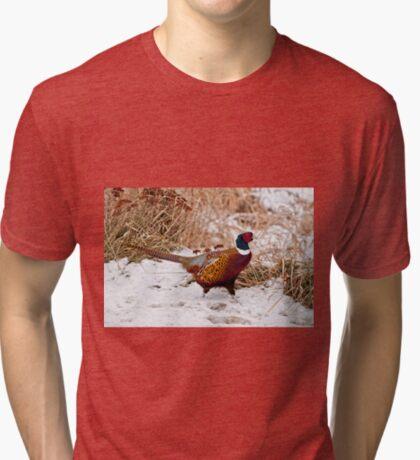 Ringed Neck Pheasant Tri-blend T-Shirt