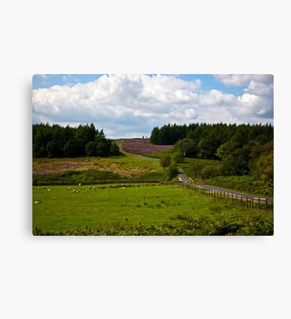 Moors Road Canvas Print