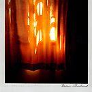 Curtain 2 Polaroïd by laurentlesax