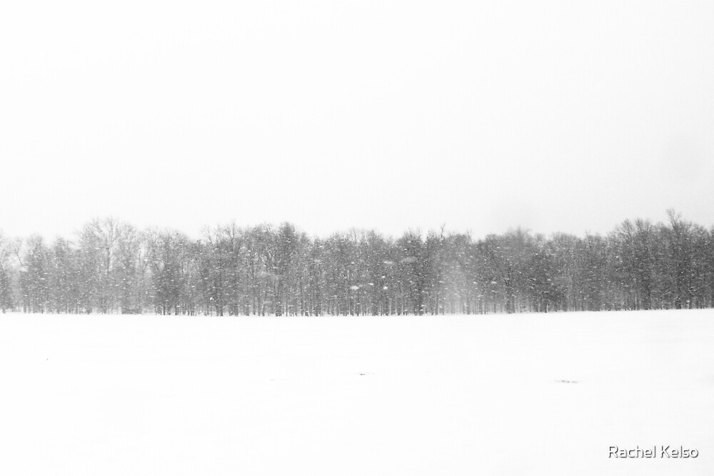 Blizzard by Rachel Kelso