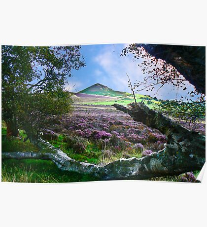 Hawnby Moor #7 Poster