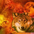 Fall and wolves by TaylerMacneill