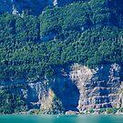 Lake Brienz, Switzerland by Melissa Fiene