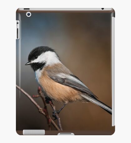 Black Capped Chickadee iPad Case/Skin