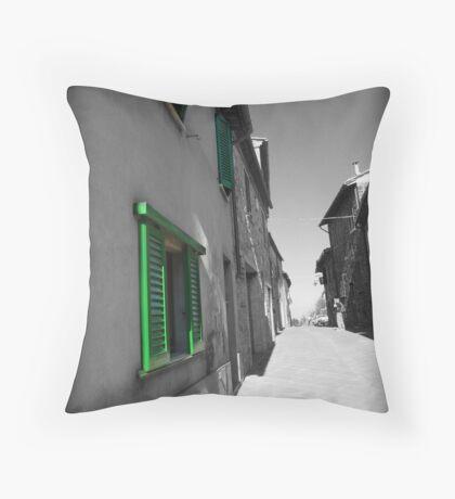 Green Shutters Throw Pillow