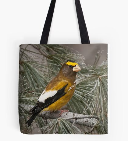 Evening Grosbeak On Pine 2 Tote Bag