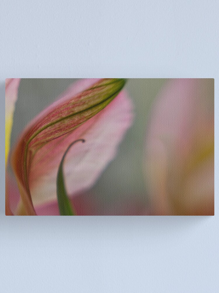 Alternate view of Curly Leaf and Petal Canvas Print