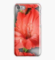 gladiola in pastel tones iPhone Case/Skin