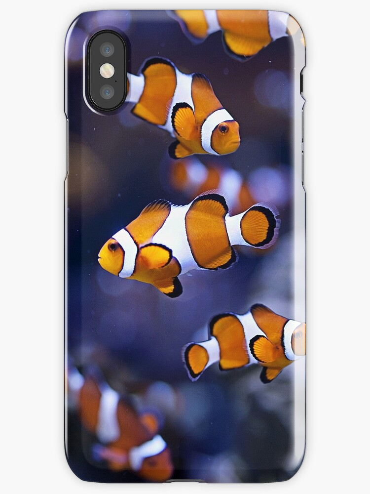 nemo clownfish by BlaizerB