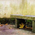 Zen Bench by Rebecca Cozart