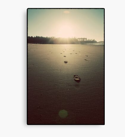 Footsteps to the Sun Canvas Print