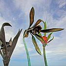 Sky Garden by David Haworth