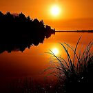 ULTIMATE REFLECTION ~  by RoseMarie747