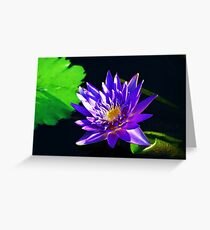 Tranquility in the garden Greeting Card