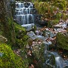 Little Falls by Mark Robson