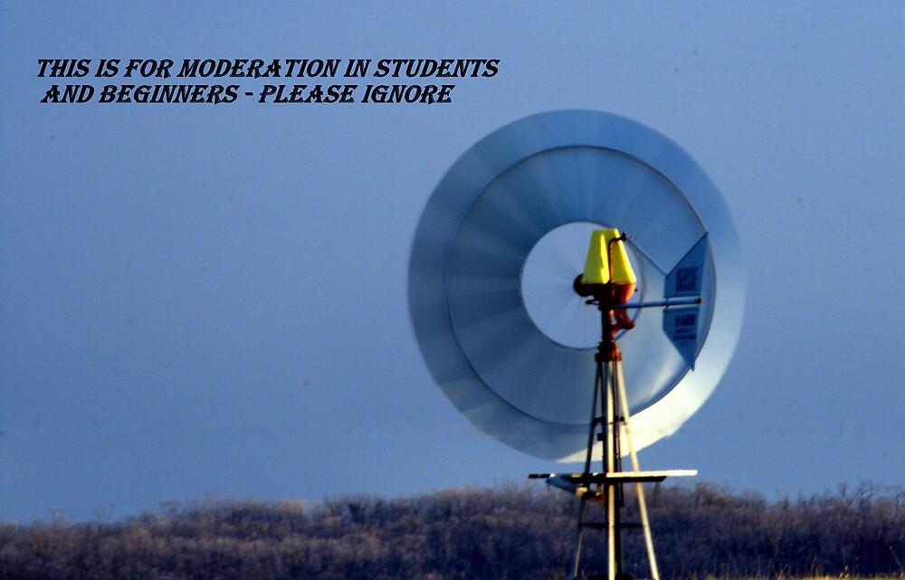 S&B Moderation Banner by Vikki Shedden Photography