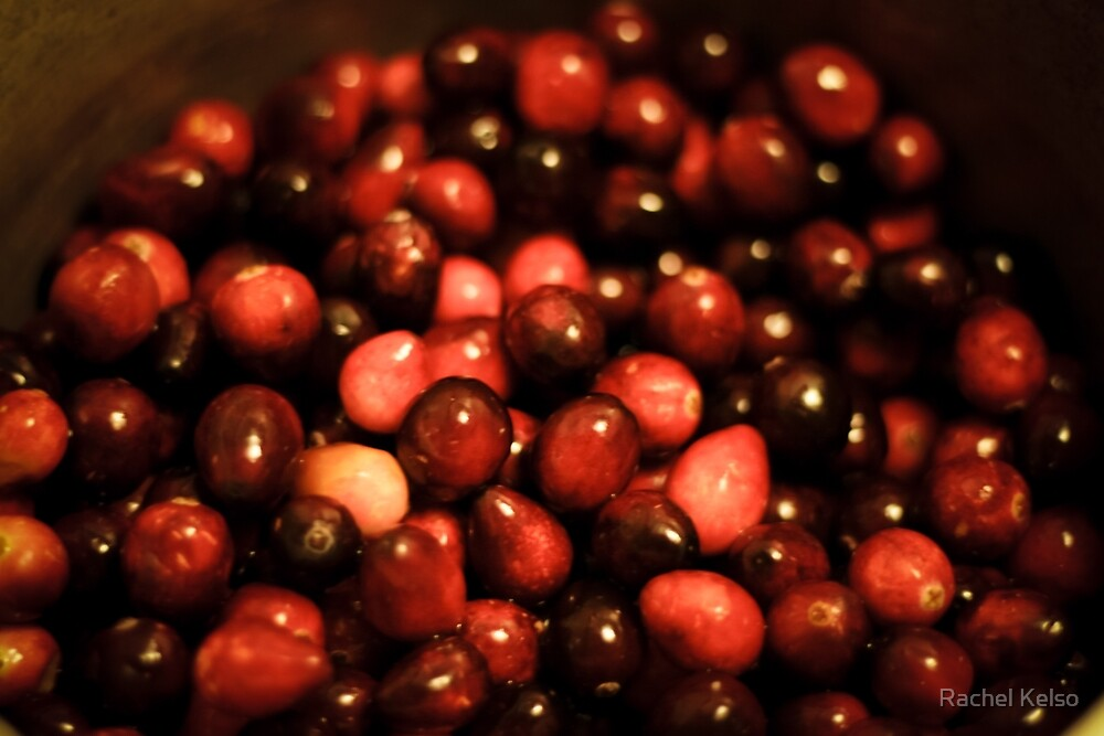 red cranberries by Rachel Kelso