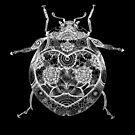 Ladybird - Black  by panda3y3