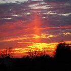 Sunset Beam by Linda Miller Gesualdo