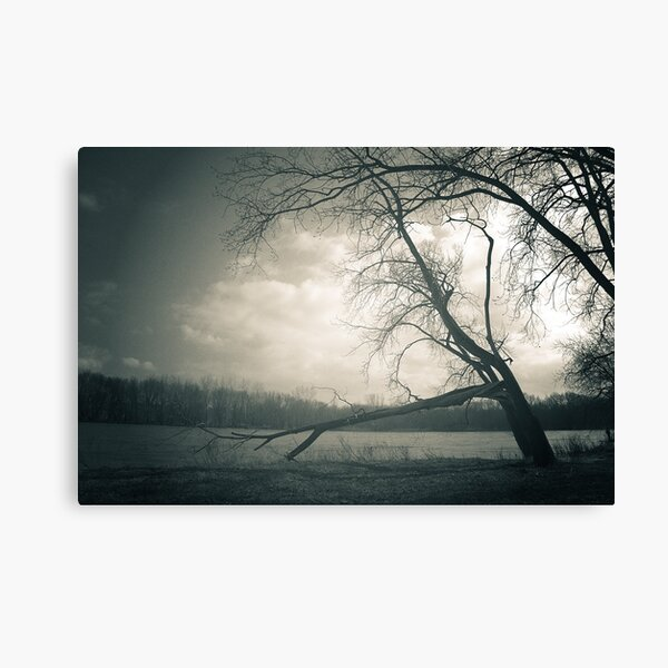 To Remember - Side Cut Metro Park Canvas Print