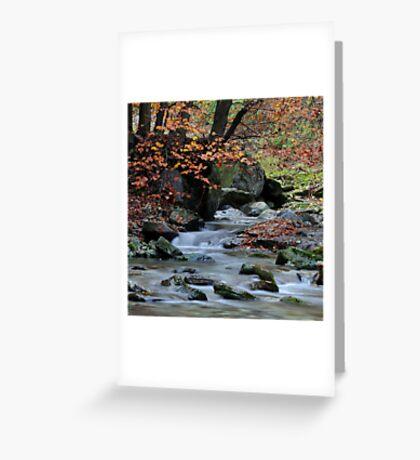 Autumn, Torrent San Giulio  III Greeting Card