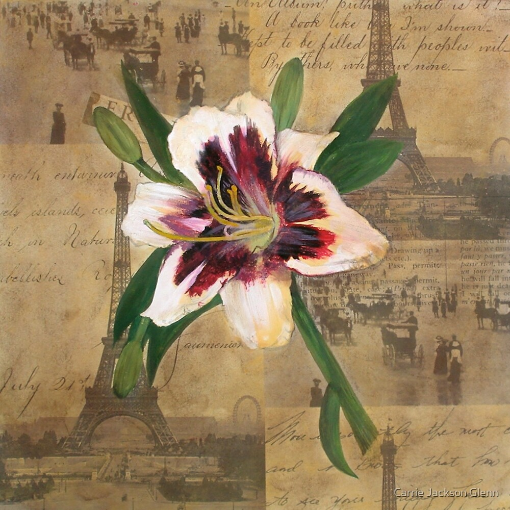 Lily of France by Carrie Jackson