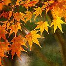 Leaf Zen Q by Rebecca Cozart